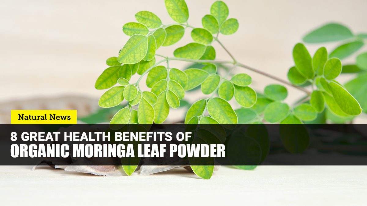 Add organic MORINGA leaf powder to your daily routine to promote your overall health