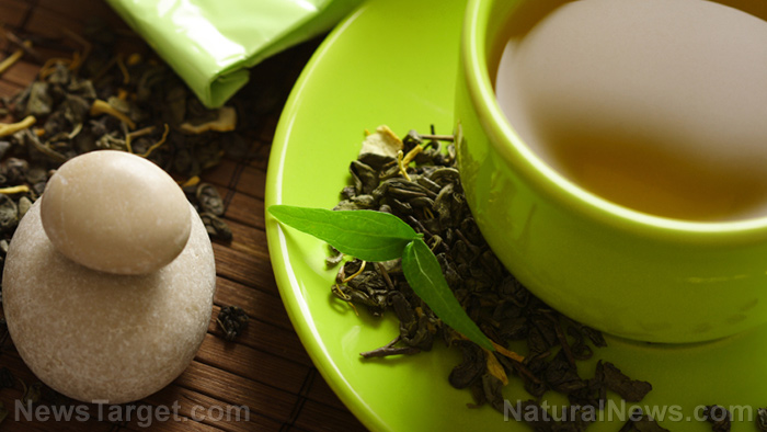 Leaky gut? Drinking green tea can help