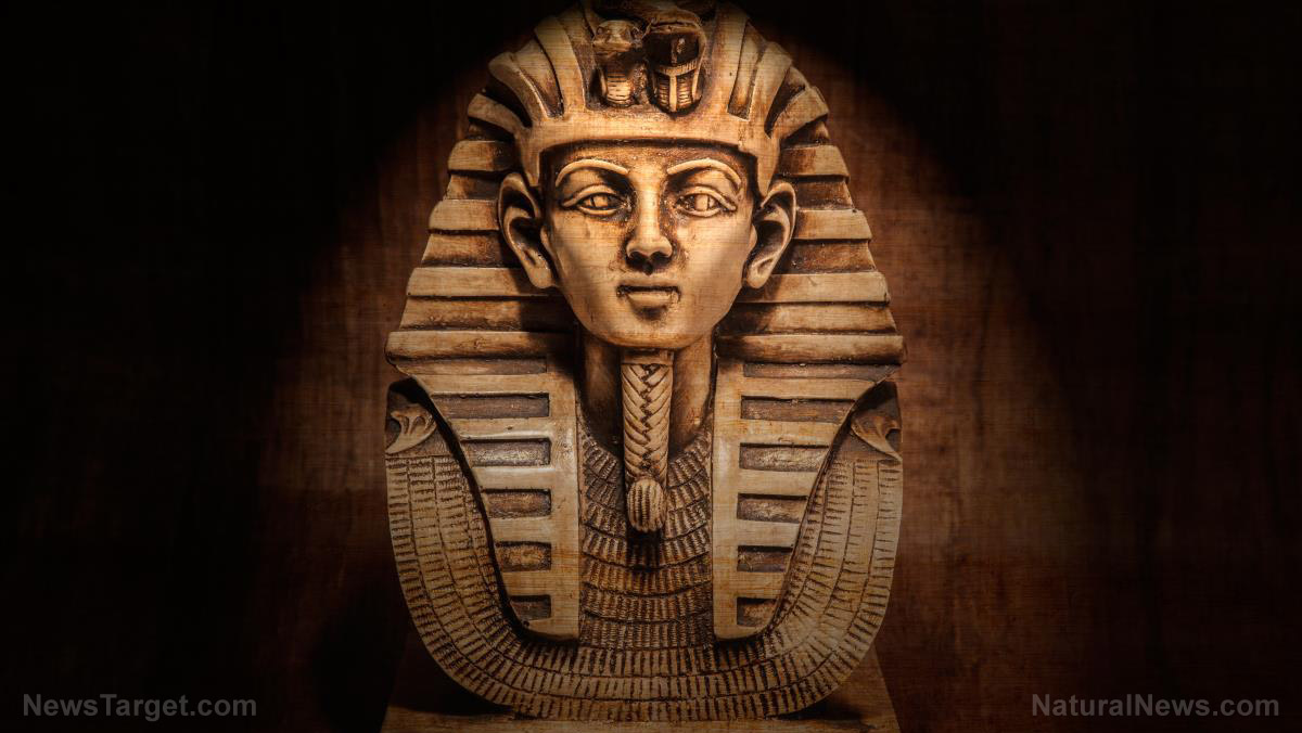 Archaeologists uncover a dark chapter in Ancient Egyptian history: 60 Mummies found with evidence of GRUESOME deaths