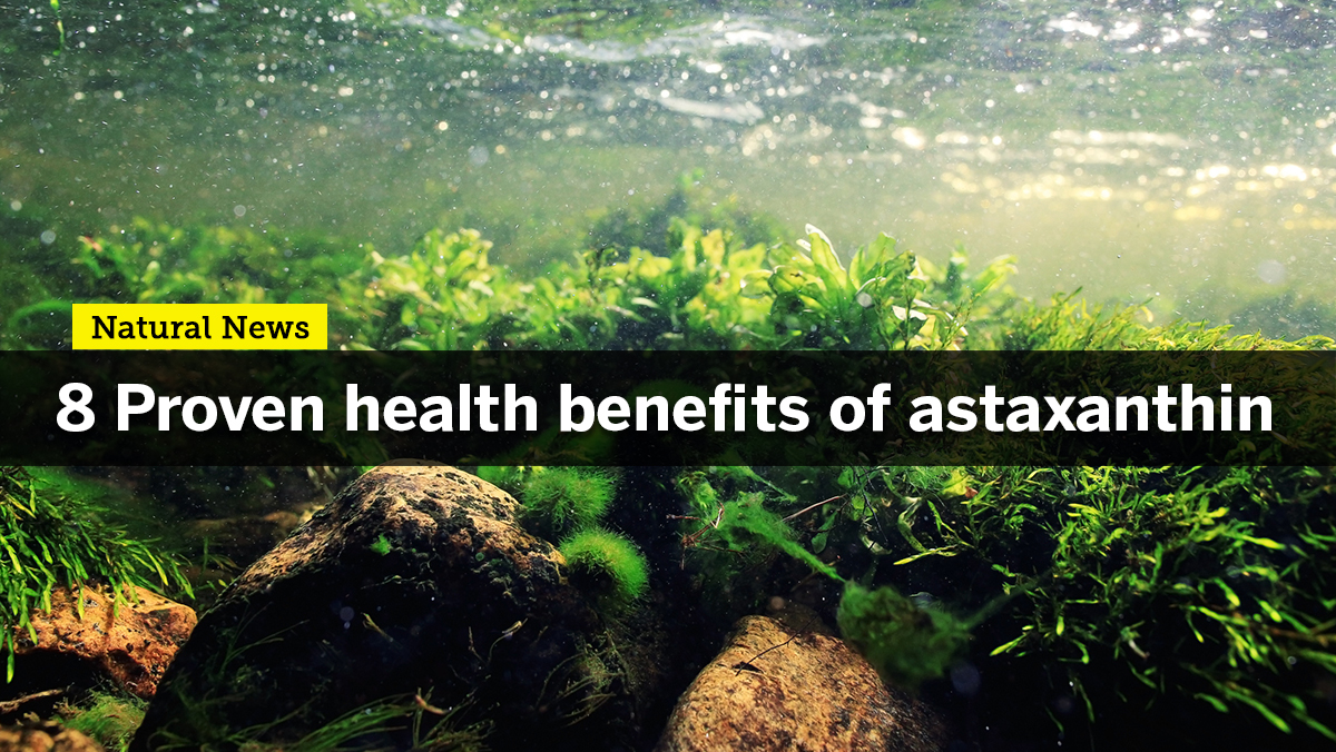 Enhance your strength and stamina with Astaxanthin, one of nature's most potent antioxidants
