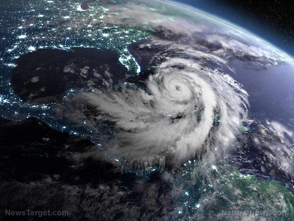 """Ignorant history professor claims that """"inaction"""" on climate change is going to cause Florida to SINK from hurricanes"""