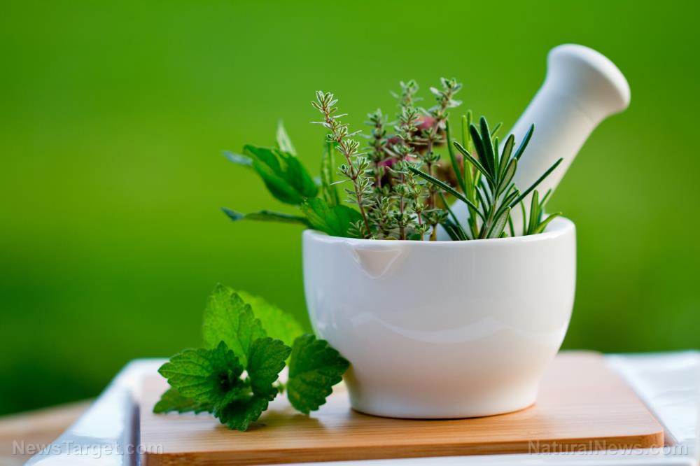Which herbal medicines work against the flu?