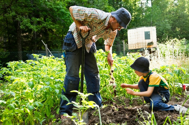 Growing your own food and supporting local farmers are crucial actions for achieving self-sufficiency