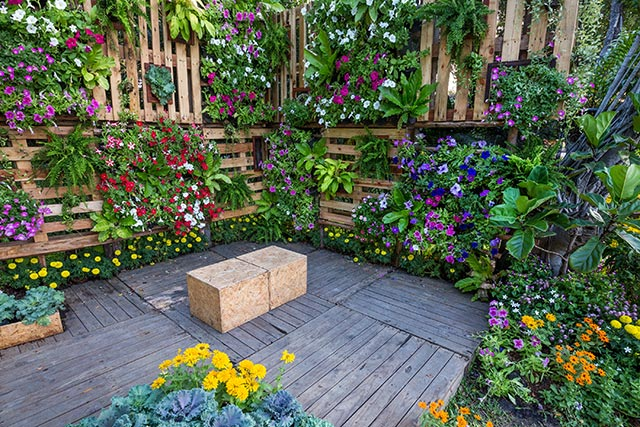 Build your own sustainable gardens: A no-nonsense guide