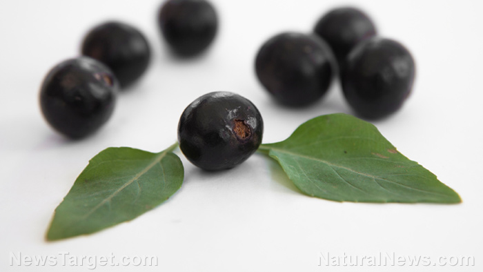 5 Health benefits of acai berry that make it a real superfood