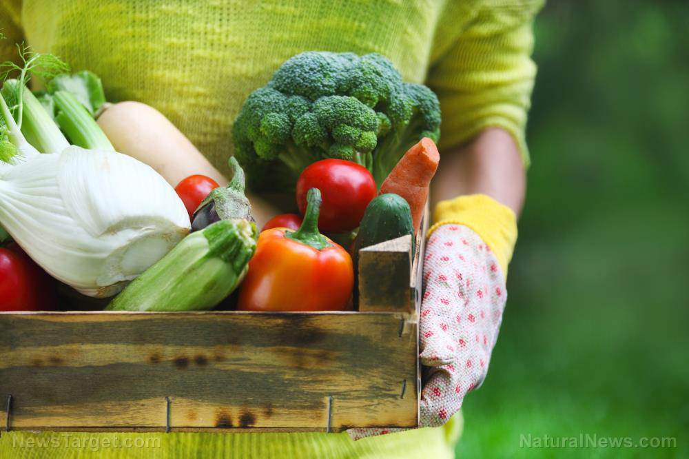 Plant-based diets can reduce risk of heart failure by up to 41%
