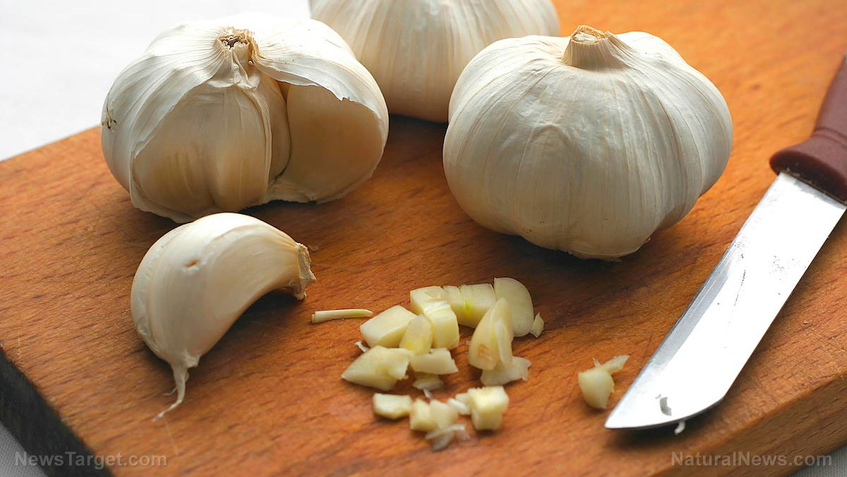 Spices and memory: Is garlic the key to improving cognitive health among the elderly?
