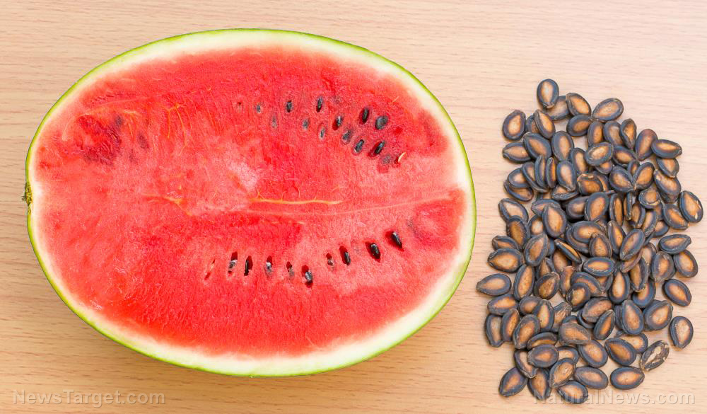 DNA from mummy tomb suggests ancient Egyptians consumed sweet watermelons similar to modern varieties