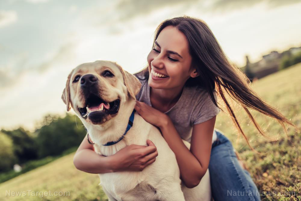 Your dog needs some face time with the pack: Study on canine health reveals playtime helps reduce long-term stress levels