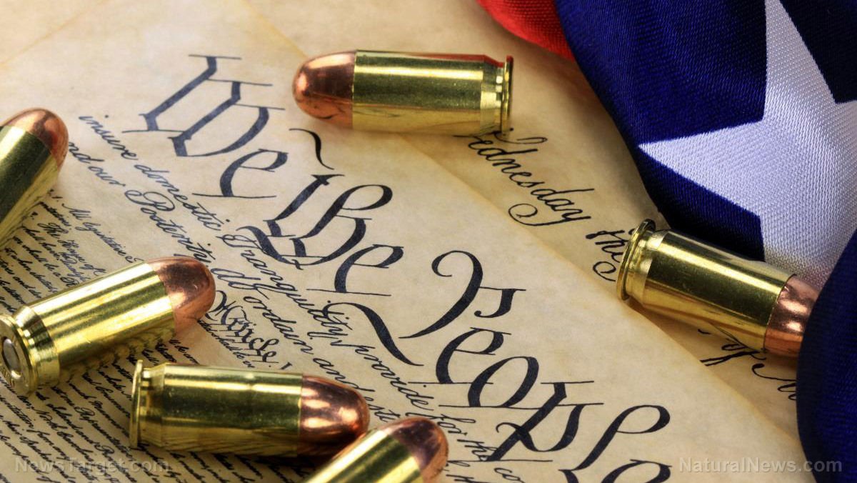 The answer to tyranny is suddenly obvious: 2A sanctuaries and armed militias in every county, every state across America