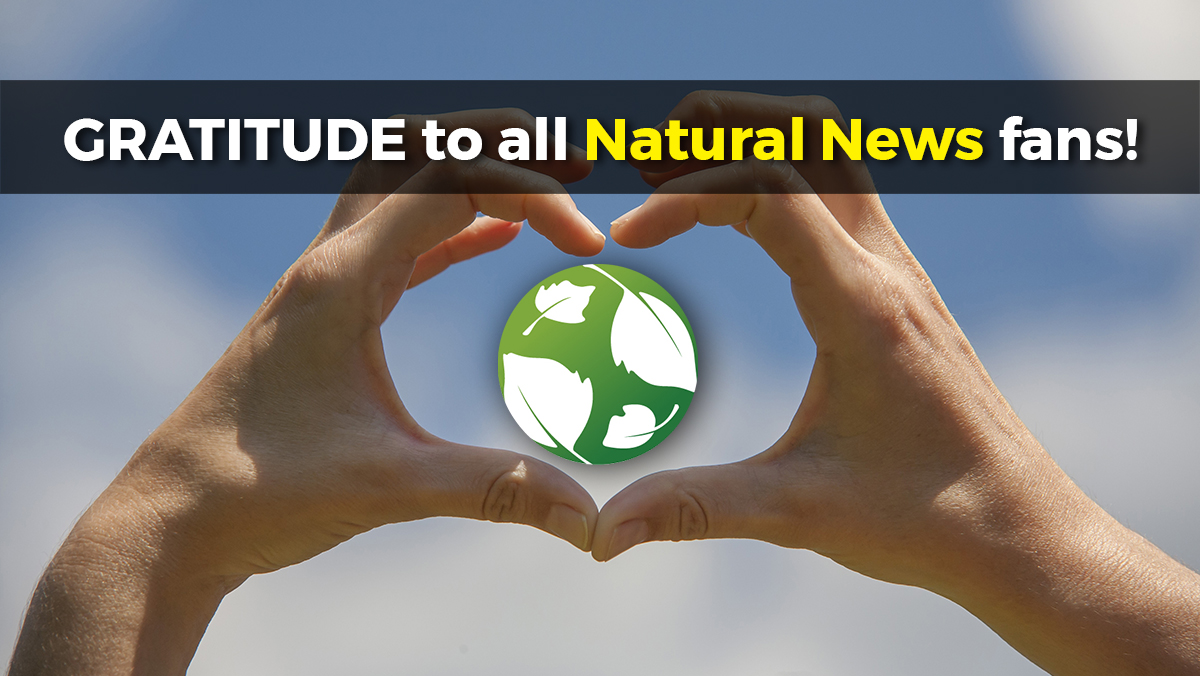 The biggest bombshell Natural News stories of 2019